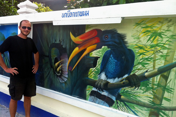 Art Wall Krabi - Exotic Birdss