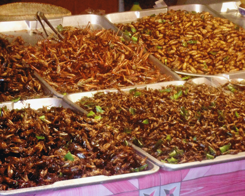 Fried Insects - Top 5 Favorite Thai Foods | a Nomad's Dream